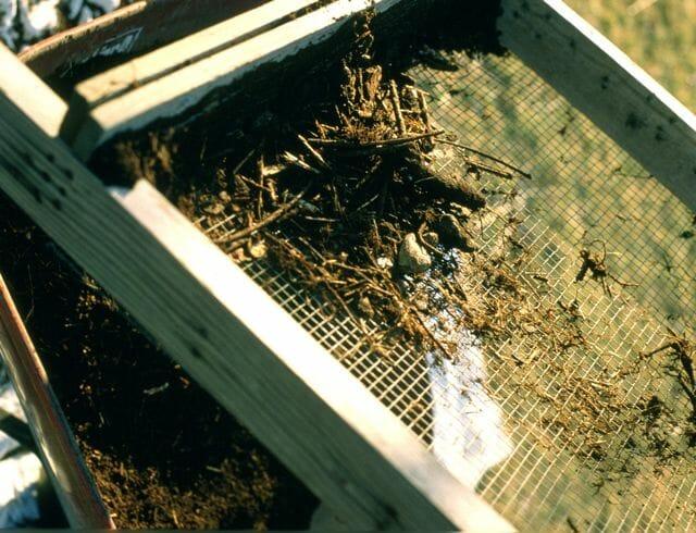 compost-screen