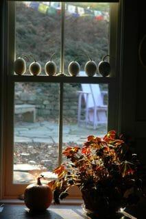 nest egg gourds