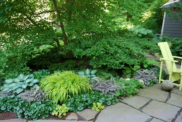 Shade Garden Design Zone 6 Small Backyard Landscaping Ideas