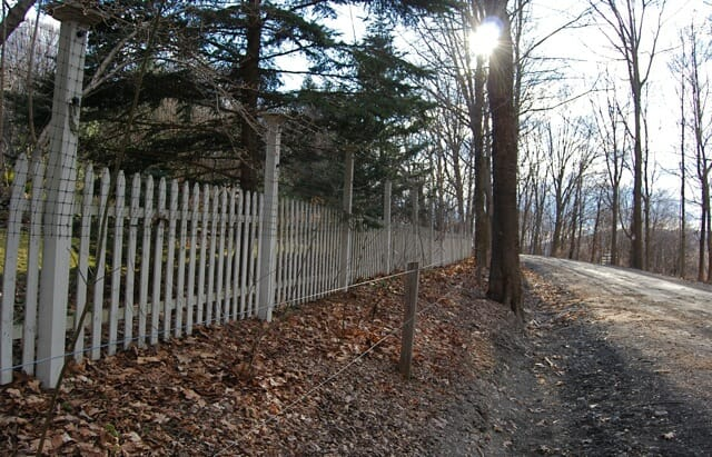 front-fence-and-trip-wire-in-sun