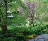 magnolia-bed-wakes-up.jpg