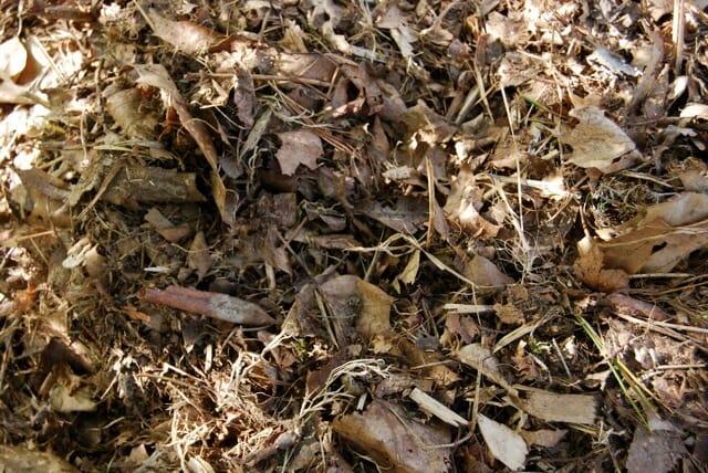 shredded-debris
