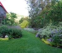 may-30-front-yard.jpg