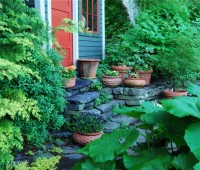 may-30-pots-by-shed.jpg