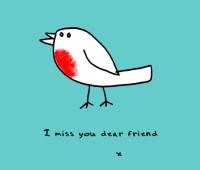 garden cartoon on robin red breast