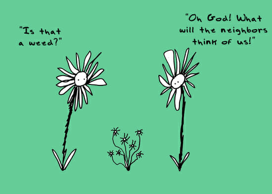 neighbors_weeds