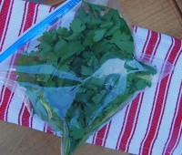 stuff-bag-with-parsley