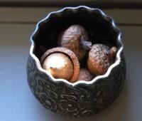 acorn-cup