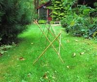 grass-repair-fall