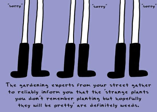 sorry_weeds_definitely
