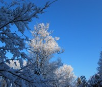 first-snowfall-2