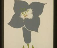 flower-show-wpa-poster