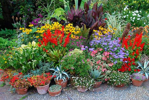 A Rhode Island Garden Party To Benefit Dixter A Way To Garden