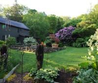 from-veggie-garden
