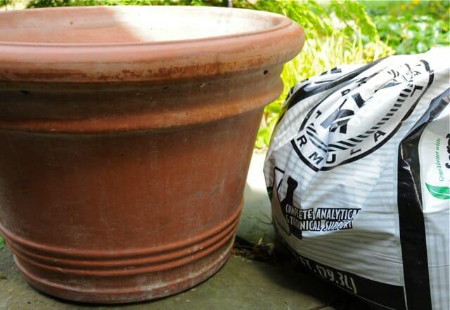 potting soil and pot