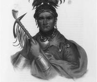 seneca-chief-named-corn-plant
