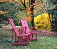 aesculus-and-red-chairs-fall