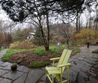 early-spring-shrubs