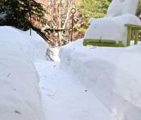 front-walk-dec-2010-snow