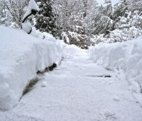 front-walk-in-early-2010-snow
