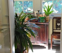 in-come-houseplants