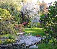 lilacs-and-apples-closer