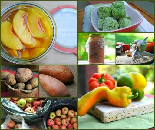 harvest collage 2