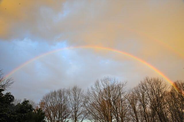 dawn rainbow