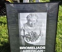 bromeliad-sign