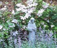 St. Francis - May