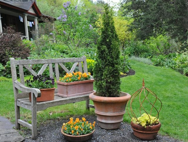 Punctuating the garden columnar evergreens a way to garden for Tall trees for small gardens