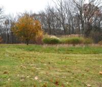 field-above-backyard-november
