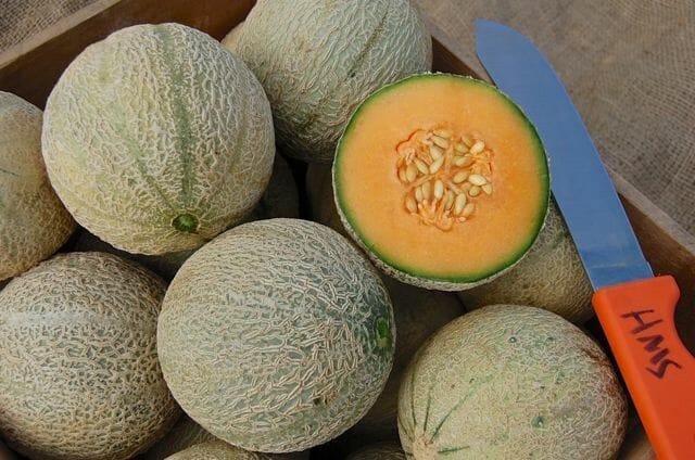 Sivan melon