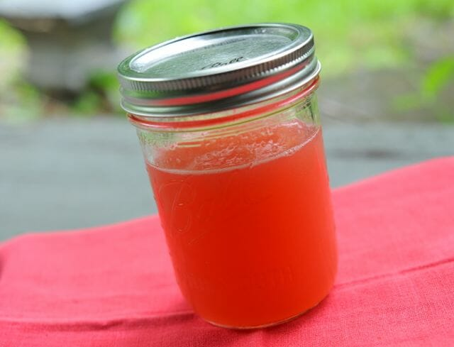 rhubarb syrup for drinks