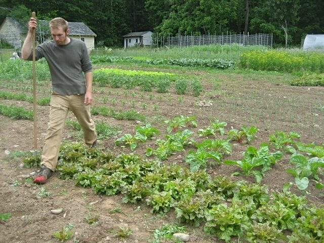 Doug Muller in spirtime at Hudson Valley Seed Library