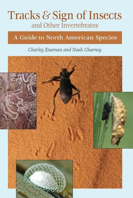 """""""Tracks and Sign of Insects"""" book cover"""