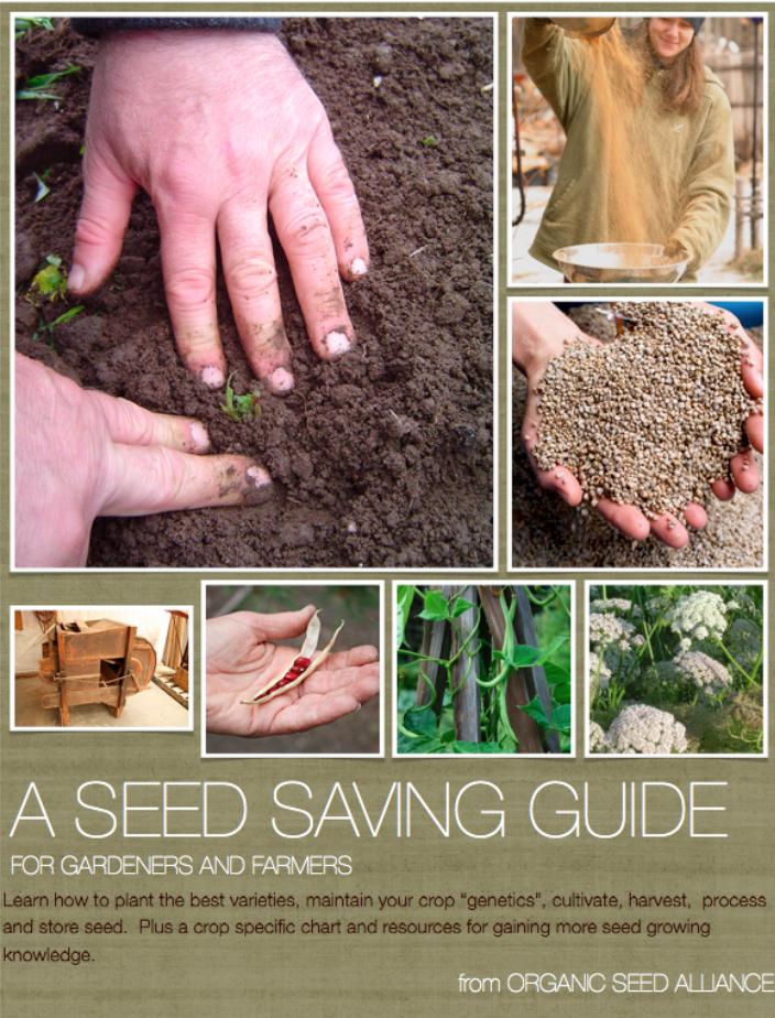 Gardening 101 - Magazine cover