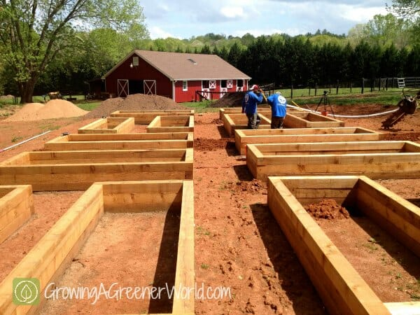 Irrigation installed in Joe Lamp'l's new raised beds