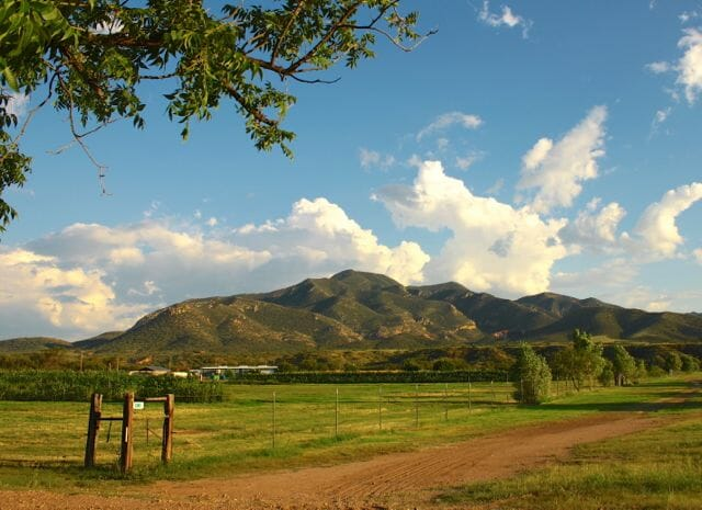 Native Seeds/SEARCH conservation farm, Tucson