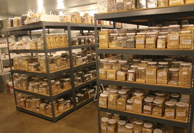 Native Seeds/SEARCH seed bank