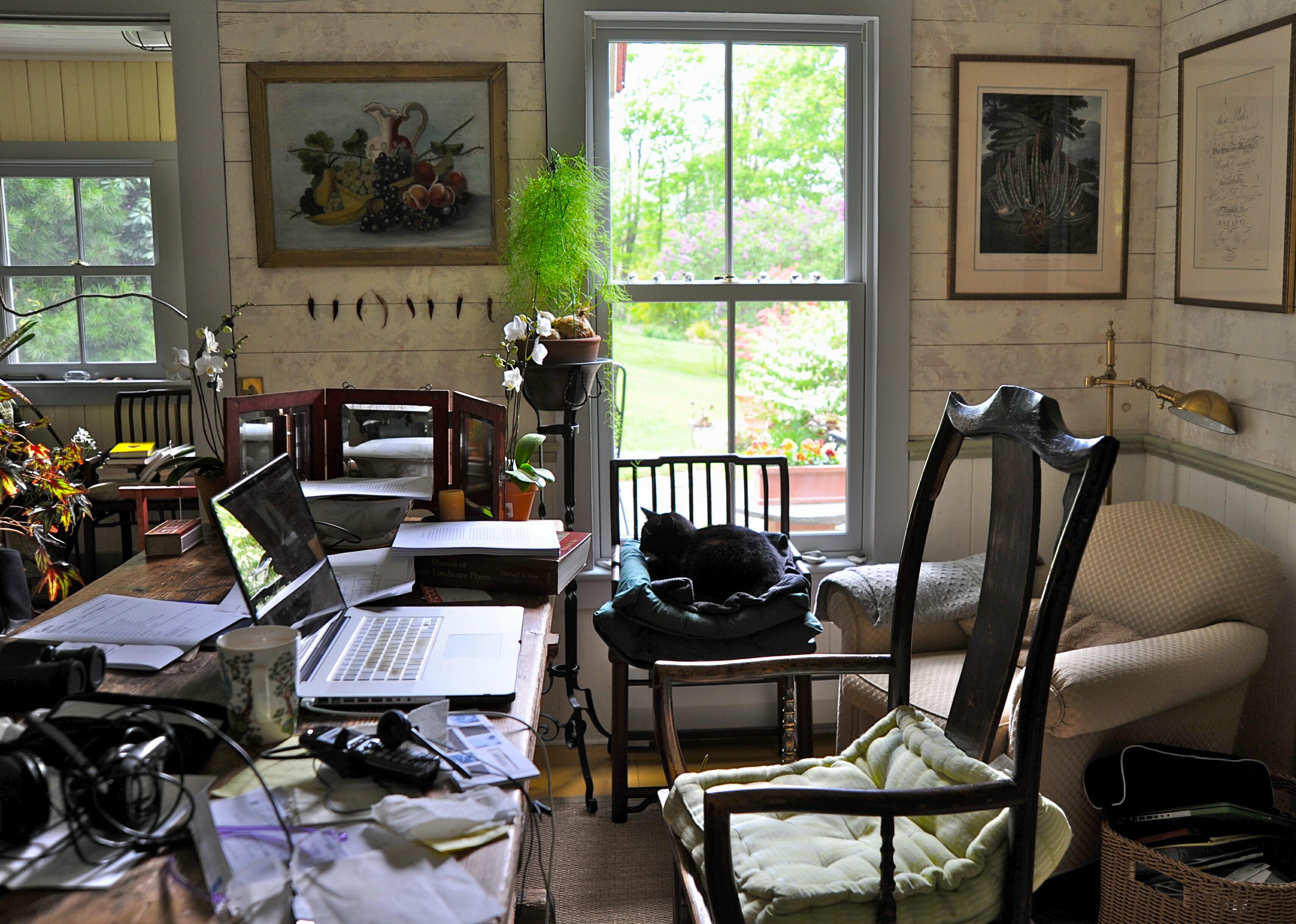 Margaret Roach office