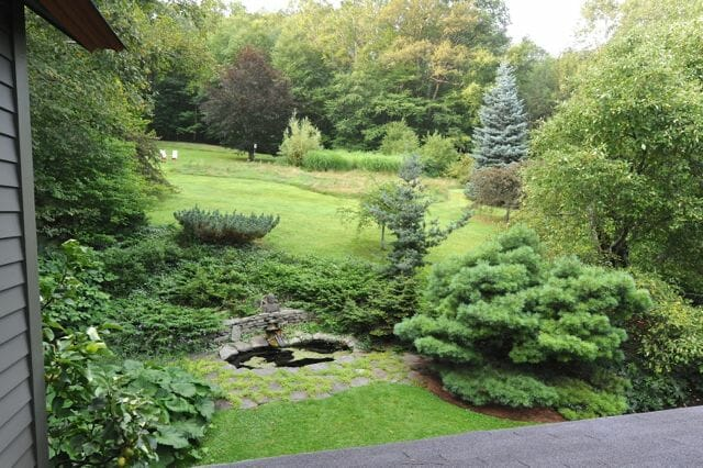 back hillside, Margaret Roach garden, fall