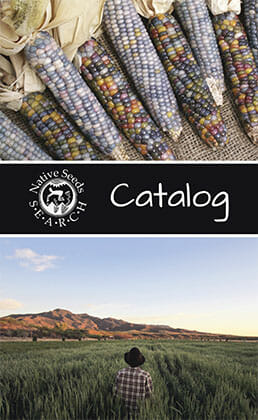 Native Seeds/SEARCH 2014 catalog