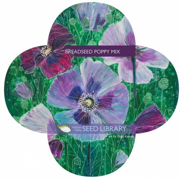 breadseed poppy mix packet from Hudson Valley Seed Library
