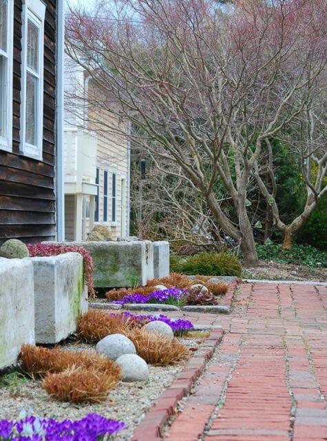 Early spring outside Avant Gardens' farmhouse