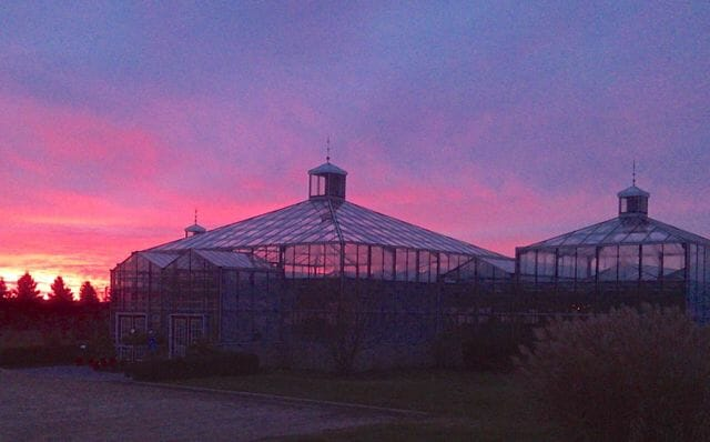 Shady Hill Gardens at sunrise