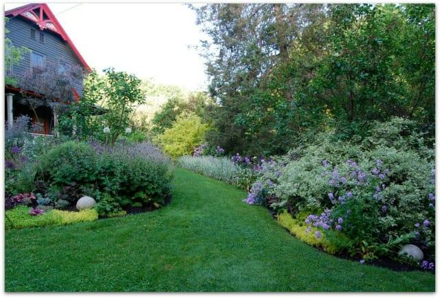 front garden spring larger