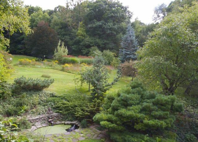 unmown back hillside fall 2014