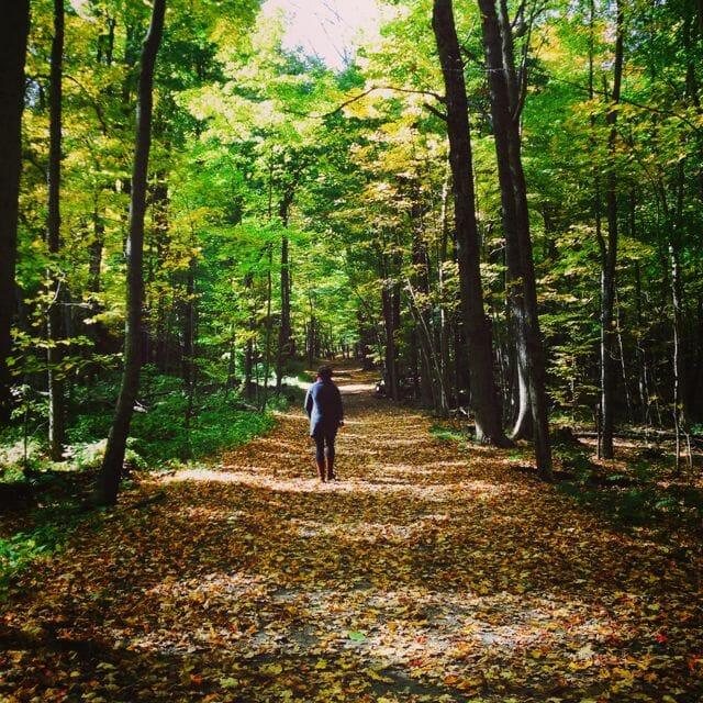 alana walking in woods