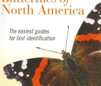 kaufman field guide to butterflies